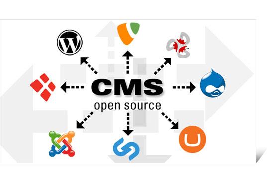 Các CMS được sử dụng nhiều